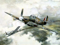 Duel - Geoff Nutkins. Inspiration for the 2006 colour scheme of the Battle of Britain Memorial Flight's Hurricane LF 363